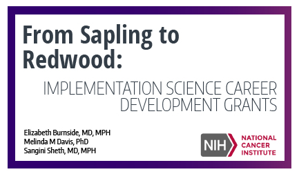 From sapling to redwood: Implementation science career development grants