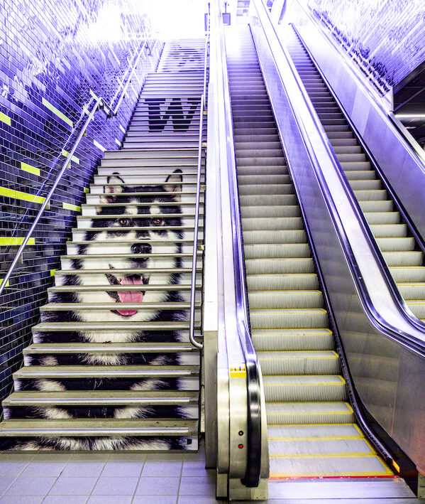 UW Light Rail Station stairs and escalator with image of mascot Dubs 2.